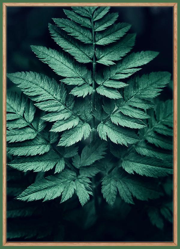 Quadro Folha Verde