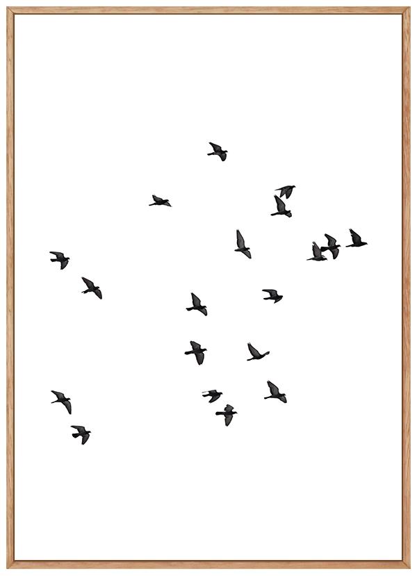 Quadro Decorativo Paisagem Pássaros Voando