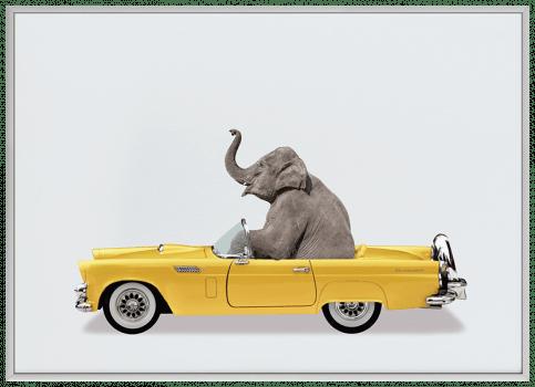 Quadro Decorativo Infantil Elefante Carro Amarelo