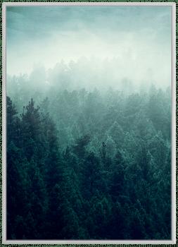 Quadros Floresta Montanha Escandinavos - Composição