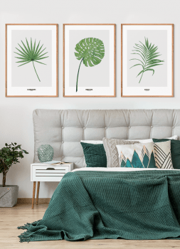 Quadros Decorativos Folha - Composição com 3 quadros