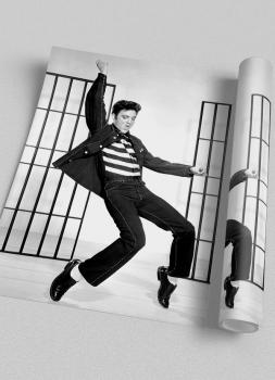 Quadro Elvis Presley Fotografia