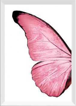 Quadro Decorativo Asas de Borboleta Rosa