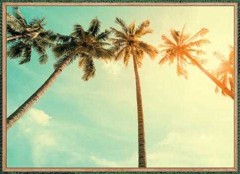 Quadro Decorativo Paisagem Coqueiros Praia Folhagens