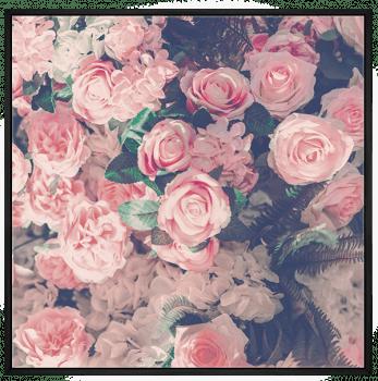 Quadro Decorativo Flores Rosa Nude