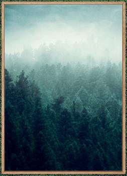 Quadro Neblina Paisagem Montanha Pinheiros Verdes
