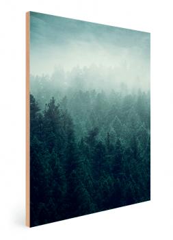 Quadro Decorativo Paisagem Montanha Pinheiros Verdes