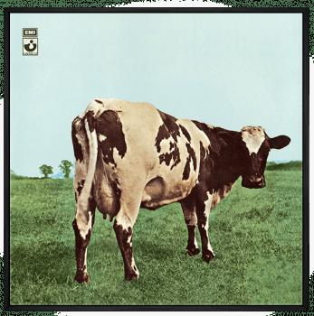 Quadro Decorativo Pink Floyd - Vinil na Parede