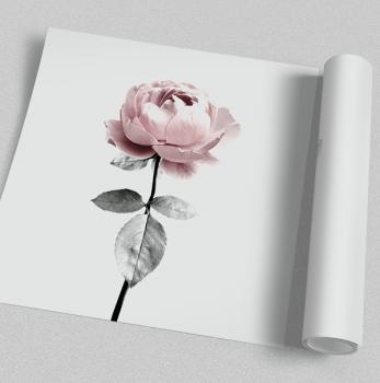Quadro Flor Rosa
